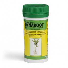 DynaRoot No. 2