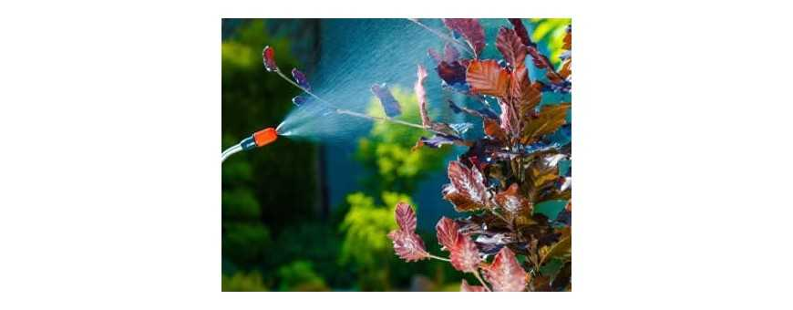 Biological Pest Control Chemical Suppliers in South Africa - Hydrax Hydro